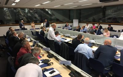 The European Commission announces next steps for Fire Information Exchange Platform (FIEP)