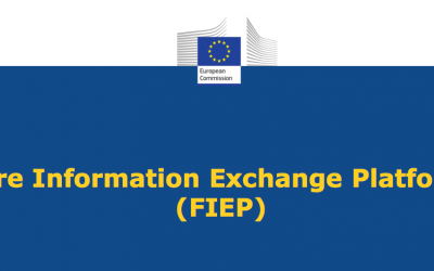 The European Commission forms two Project Teams for the FIEP