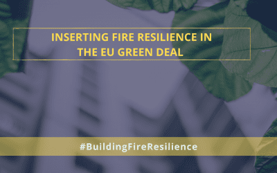 Inserting Buildings' Fire Resilience in the EU Green Deal